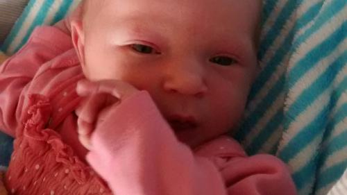 Anfang Juni erblickte die kleine Elly